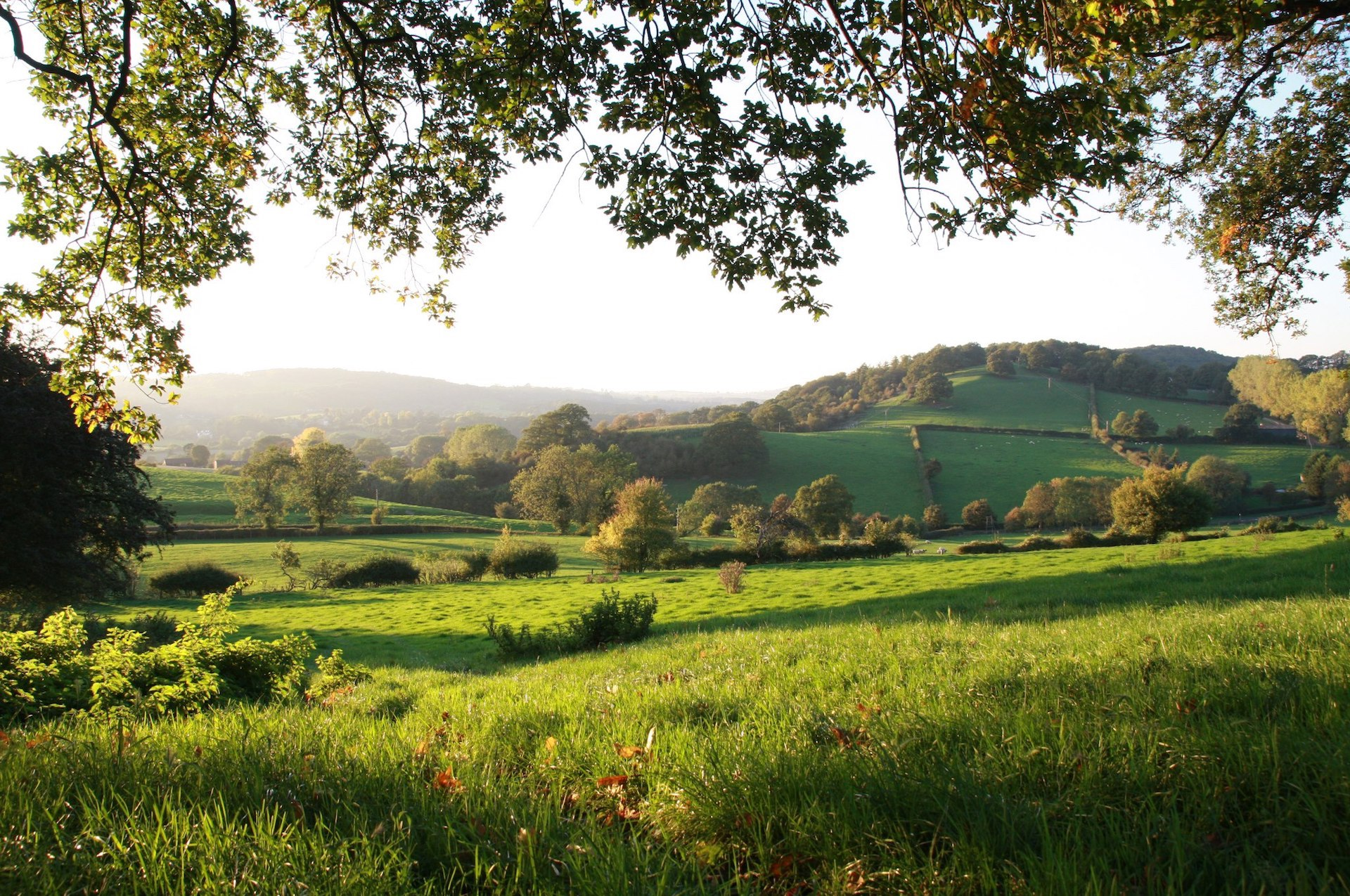 Locality - Herefordshire